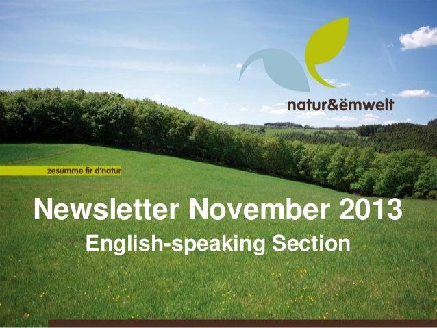 Newsletter November 2013 English-speaking Section