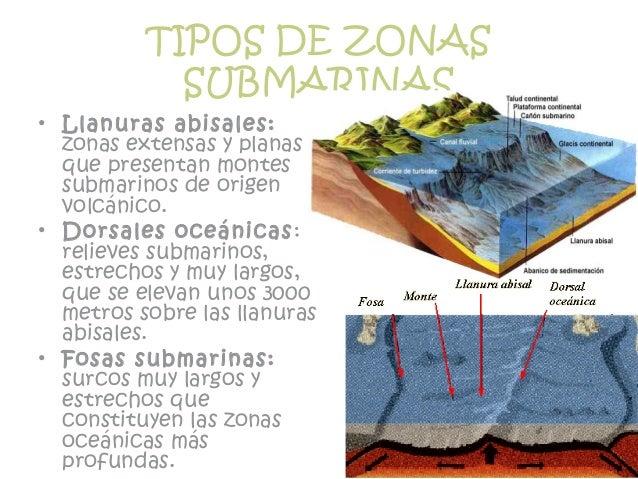 TIPOS DE ZONAS SUBMARINAS • Llanuras abisales: zonas extensas y planas que presentan montes submarinos de origen volcánico...