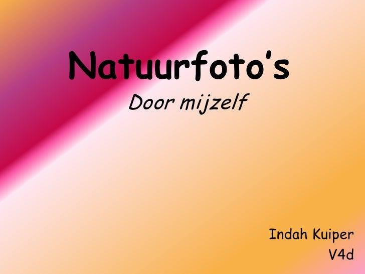 Natuurfoto's<br />Door mijzelf<br />Indah Kuiper<br />V4d<br />