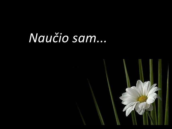 nauio-sam-1-728.jpg?cb=1261593484