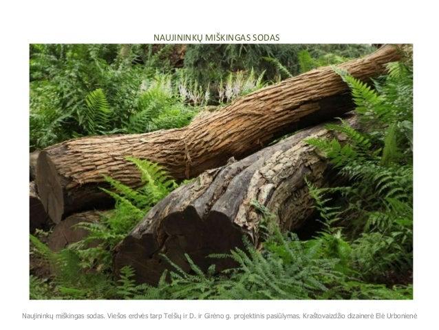 NAUJININKŲ MIŠKINGAS SODAS Naujininkų miškingas sodas. Viešos erdvės tarp Telšių ir D. ir Girėno g. projektinis pasiūlymas...