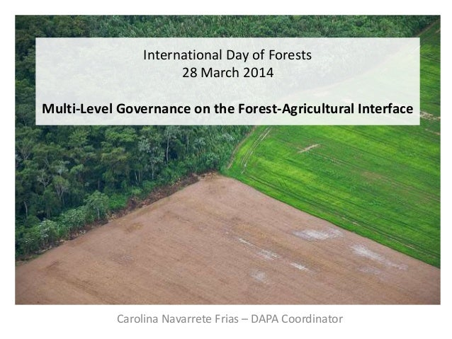 International Day of Forests 28 March 2014 Multi-Level Governance on the Forest-Agricultural Interface Carolina Navarrete ...