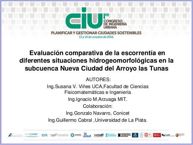 Evaluación comparativa de la escorrentía en diferentes situaciones hidrogeomorfológicas en la subcuenca Nueva Ciudad del A...