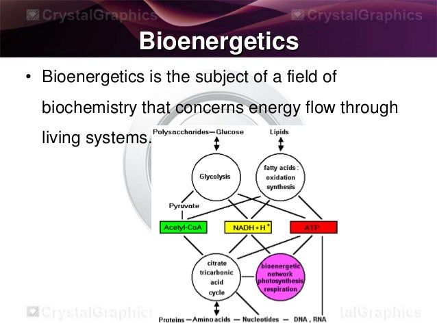 Bioenergetics and energy produced in TCA cycle by Naveed Akhtar