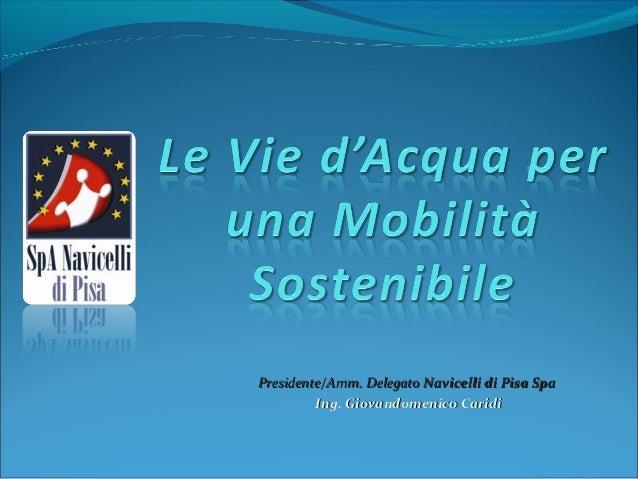 Presidente/Amm. Delegato Navicelli di Pisa Spa         Ing. Giovandomenico Caridi