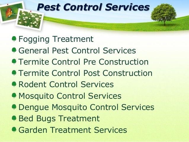 Nayab Pest Control Company Presentations