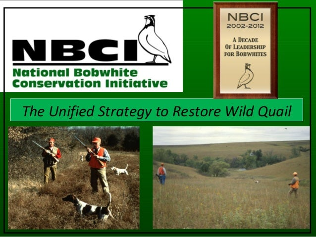 The Unified Strategy to Restore Wild Quail