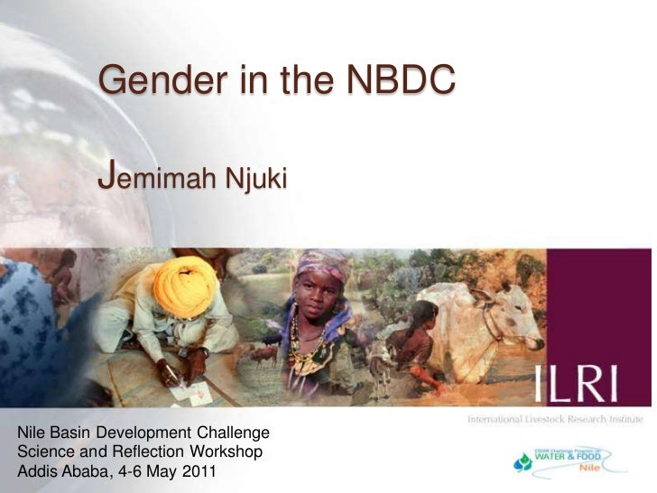 Gender in the NBDCJemimah Njuki<br />Nile Basin Development ChallengeScience and Reflection WorkshopAddis Ababa, 4-6 May 2...
