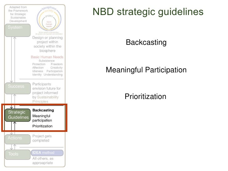 NBD strategic guidelines Backcasting Meaningful Participation Prioritization