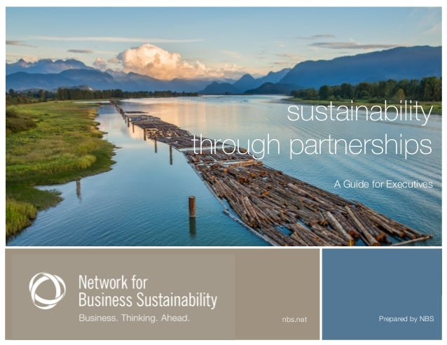 Prepared by NBSnbs.net sustainability through partnerships A Guide for Executives