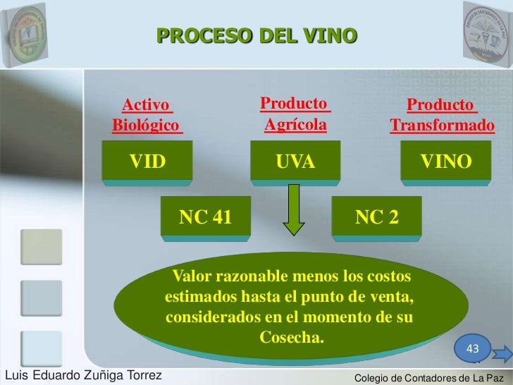 PROCESO DEL VINO                  Activo                 Producto              Producto                 Biológico         ...