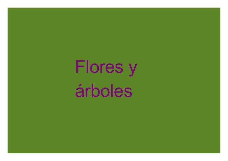 Flores y árboles
