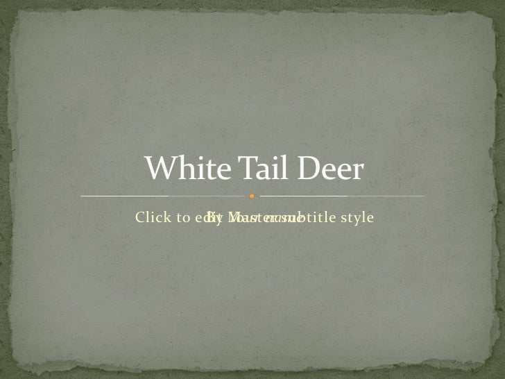 By Your name White Tail Deer