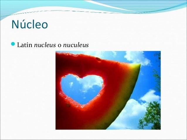 Núcleo Slide 3