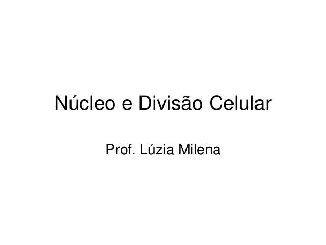 Núcleo e Divisão Celular Prof. Lúzia Milena