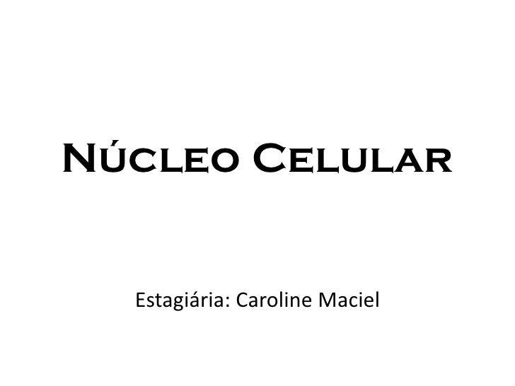 Núcleo Celular     Estagiária: Caroline Maciel