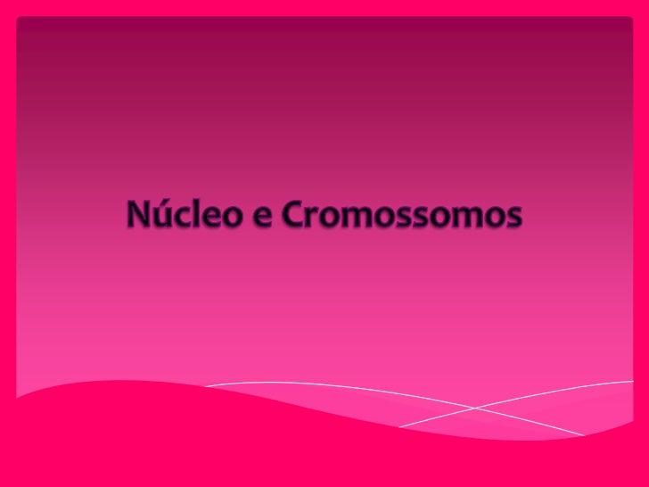 Núcleo e Cromossomos<br />