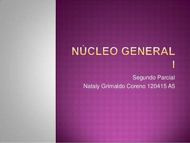 Segundo ParcialNataly Grimaldo Coreno 120415 A5