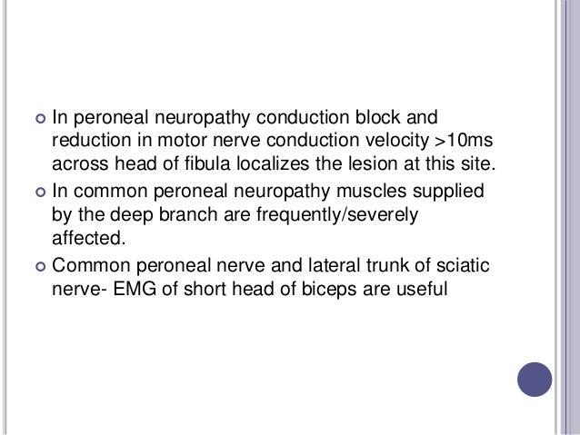 Nerve Conduction Studies Lower Leg