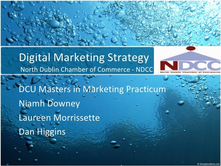 Digital Marketing Strategy North Dublin Chamber of Commerce - NDCC DCU Masters in Marketing Practicum Niamh Downey Laureen...