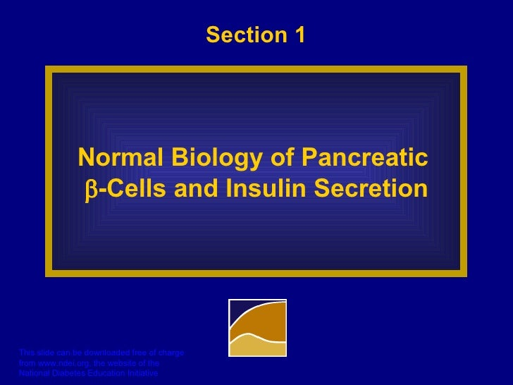 Section 1 Normal Biology of Pancreatic   -Cells and Insulin Secretion
