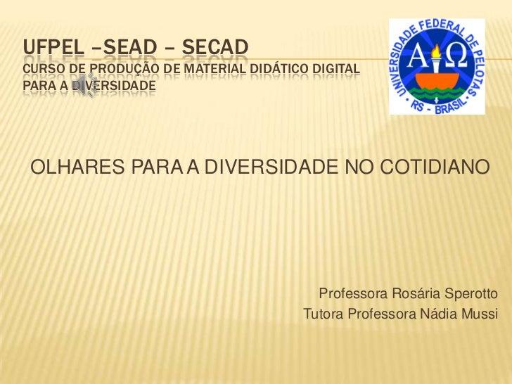 UFPEL –SEAD – SECADCURSO DE PRODUÇÃO DE MATERIAL DIDÁTICO DIGITALPARA A DIVERSIDADE OLHARES PARA A DIVERSIDADE NO COTIDIAN...