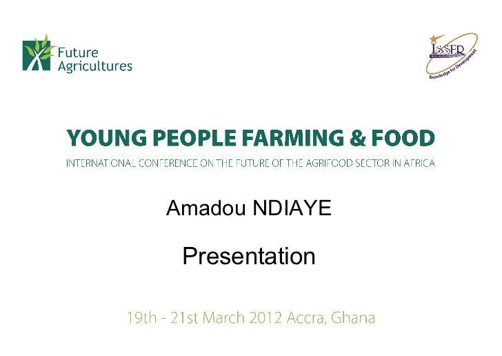 Amadou NDIAYE Presentation