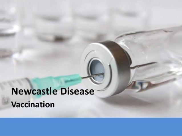 Newcastle Disease Vaccination