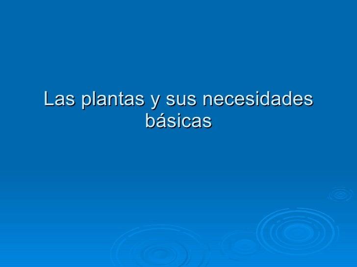 Las plantas y sus necesidades básicas