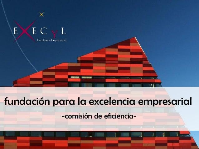 fundación para la excelencia empresarial -comisión de eficiencia-