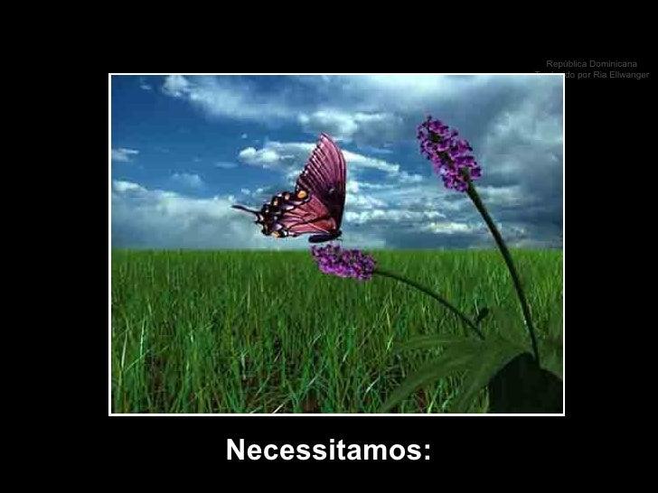 Necessitamos: