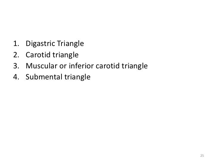 Roof Of Digastric Triangle Triangles Of Neck By Dr Juveria