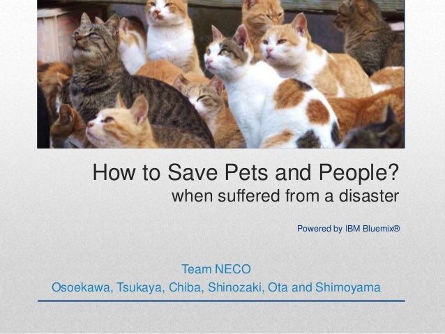 How to Save Pets and People? when suffered from a disaster Powered by IBM Bluemix® Team NECO Osoekawa, Tsukaya, Chiba, Shi...