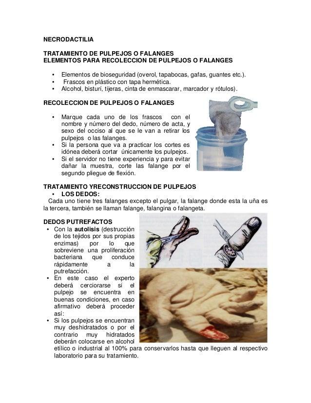 NECRODACTILIA TRATAMIENTO DE PULPEJOS O FALANGES ELEMENTOS PARA RECOLECCION DE PULPEJOS O FALANGES • Elementos de biosegur...
