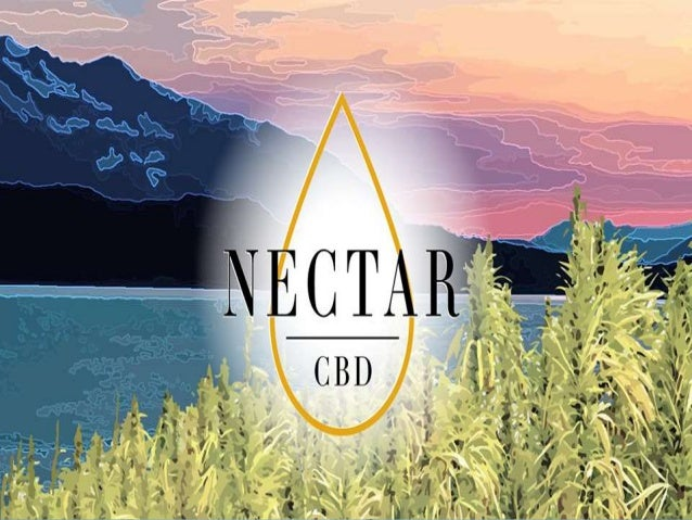 Buy CBD Rich Hemp Oil and Drops Online | Nectar CBD