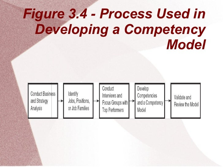 Figure 3.4 - Process Used in  Developing a Competency                      Model