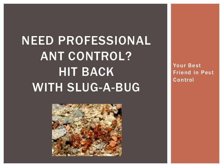 Your Best Friend in Pest Control<br />Need Professional Ant control?Hit back with slug-a-bug<br />