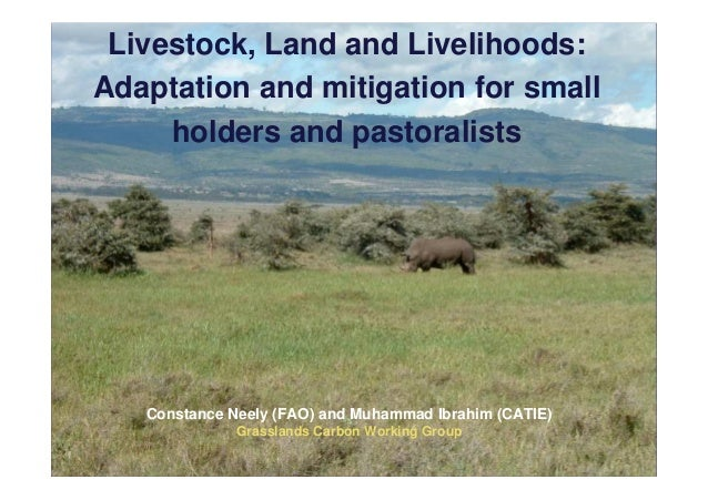 Livestock, Land and Livelihoods:Adaptation and mitigation for small     holders and pastoralists   Constance Neely (FAO) a...