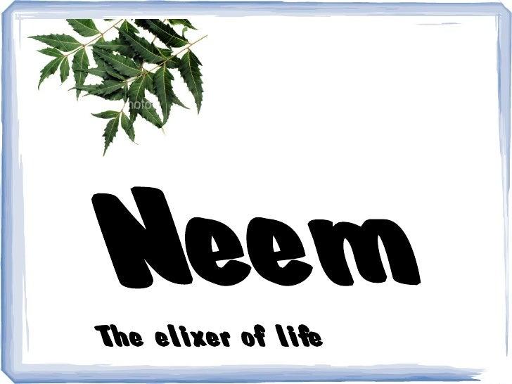 Neem The elixer of life