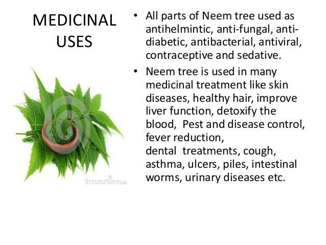 Neem Benefits / Neem Tree Benefits
