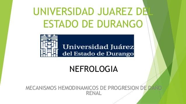 UNIVERSIDAD JUAREZ DEL ESTADO DE DURANGO  NEFROLOGIA MECANISMOS HEMODINAMICOS DE PROGRESION DE DAÑO RENAL