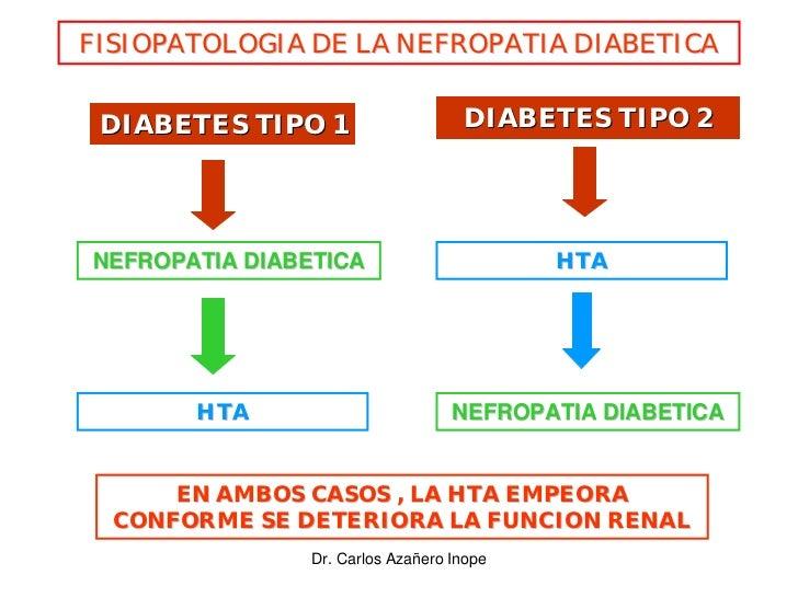 FISIOPATOLOGIA DE LA NEFROPATIA DIABETICA    DIABETES TIPO 1                    DIABETES TIPO 2     NEFROPATIA DIABETICA  ...
