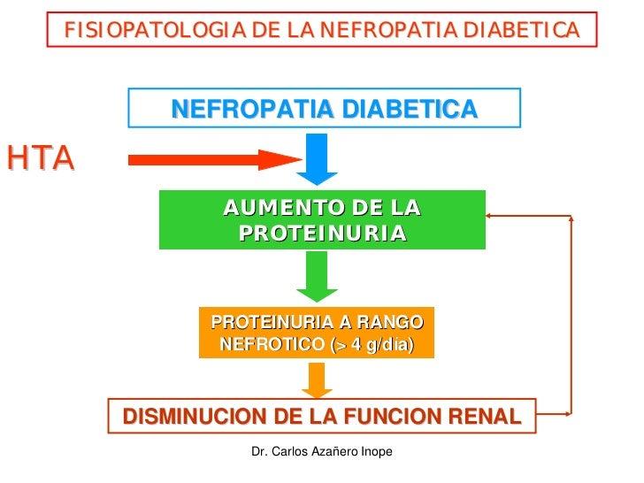 FISIOPATOLOGIA DE LA NEFROPATIA DIABETICA             NEFROPATIA DIABETICA  HTA               AUMENTO DE LA               ...