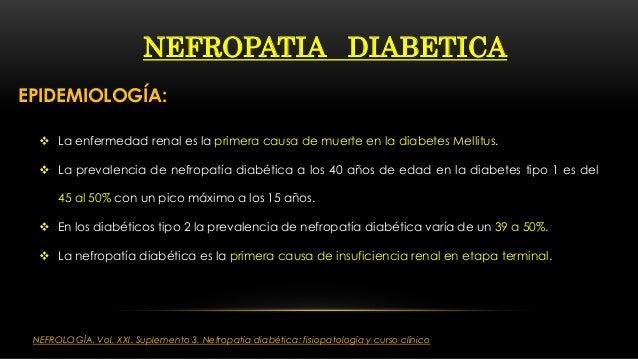 NEFROLOGIA CLINICA: Nefropatia diabetica