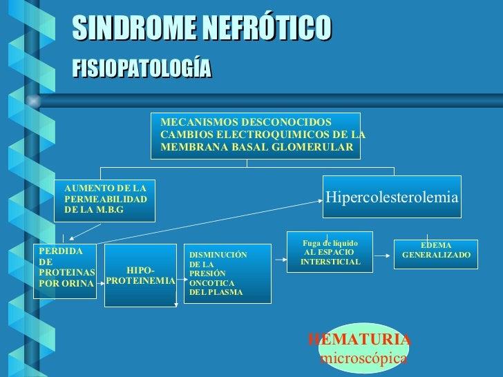 SINDROME NEFRÓTICO FISIOPATOLOGÍA   EDEMA GENERALIZADO Fuga de líquido AL ESPACIO  INTERSTICIAL DISMINUCIÓN DE LA PRESIÓN ...
