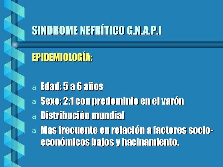 SINDROME NEFRÍTICO G.N.A.P.I <ul><li>EPIDEMIOLOGÍA: </li></ul><ul><li>Edad: 5 a 6 años </li></ul><ul><li>Sexo: 2:1 con pre...