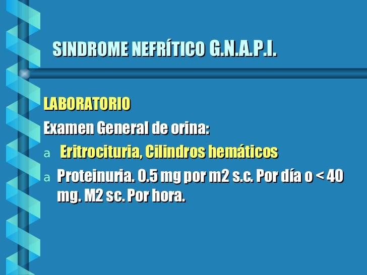 SINDROME NEFRÍTICO   G.N.A.P.I. <ul><li>LABORATORIO </li></ul><ul><li>Examen General de orina: </li></ul><ul><li>Eritrocit...