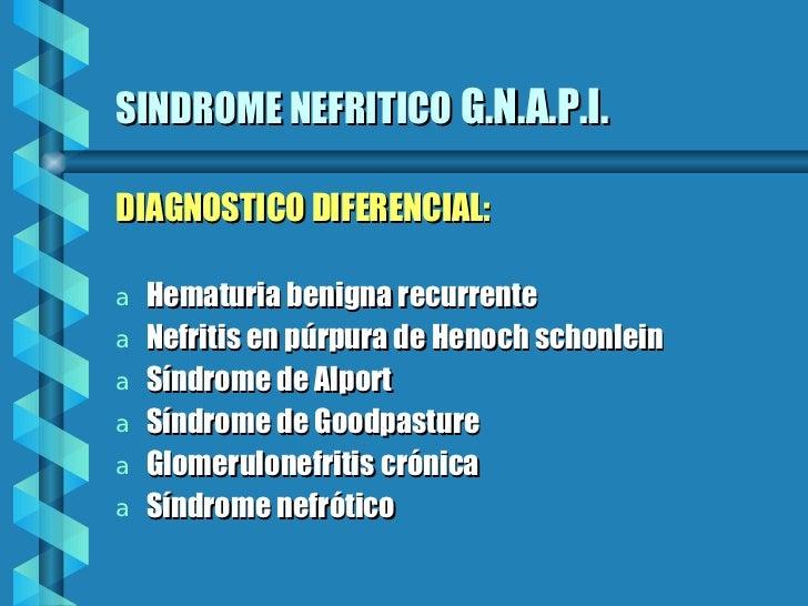 SINDROME NEFRITICO   G.N.A.P.I. <ul><li>DIAGNOSTICO DIFERENCIAL: </li></ul><ul><li>Hematuria benigna recurrente </li></ul>...