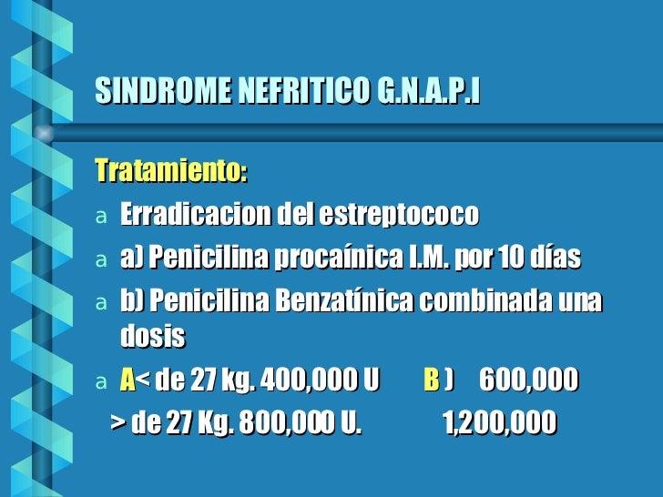 SINDROME NEFRITICO G.N.A.P.I <ul><li>Tratamiento: </li></ul><ul><li>Erradicacion del estreptococo </li></ul><ul><li>a) Pen...