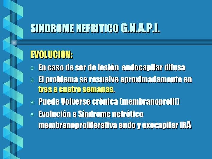 SINDROME NEFRITICO   G.N.A.P.I. <ul><li>EVOLUCION: </li></ul><ul><li>En caso de ser de lesión  endocapilar difusa </li></u...